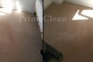 Stain removal – Carpet Cleaning